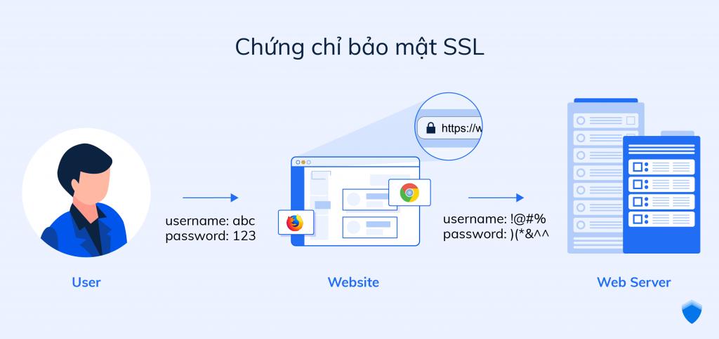Bảo vệ website với chứng chỉ SSL