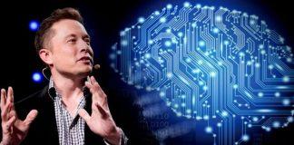 Elon Musk AI sẽ khiến nhiều người mất việc
